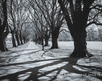 Jesus Green Trees Shadows Wall Art Prints-Cambridge-Black and White Limited Edition Unframed or Ready to Hang-Canvas-Art Panel