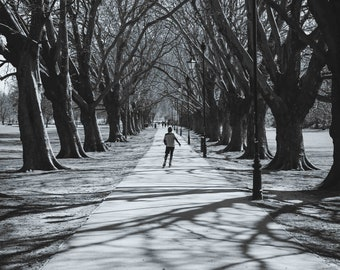 Jesus Green Trees Shadows Roller Skater Wall Art Prints-Cambridge-Black and White Limited Edition Unframed or Ready to Hang-Canvas-Art Panel