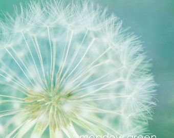 dandelion unframed print and wall art in custom sizes- limited editions- art panel- canvas-ready to hang- bedroom art-calm wall art