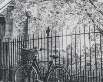 Cambridge Bicycle Collection-Wall Art and Fine Art Prints-Black and White Limited Edition Unframed or Ready to Hang-Canvas-Art Panel