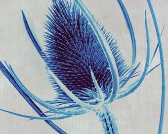 Blue Floral Botanical Limited Edition Print or Ready to Hang - Custom Sizes - Art Panel - Floral canvas and more-bedroom and lounge wall art
