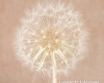 Dandelion Canvas Wall Art-Botanical Canvas-Certificate of Archival Quality-White Gift Box - Bedroom Wall Art- Lounge Wall Art- Custom Sizes