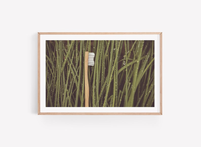 Dental Photo Art of Toothbrush in Grass  Digital Instant image 0
