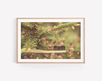 Dental Photo Art of Toothbrush in Pine - Digital Instant Download - Poster Wall Art - Dentist Office Decoration - Oral Care Art for Print