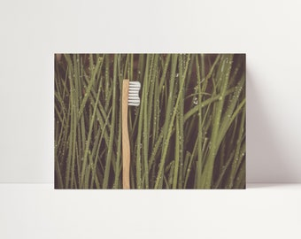 Dental Photo Art of Toothbrush in Grass - Digital Instant Download - Poster Wall Art - Dentist Office Decoration - Oral Care Print