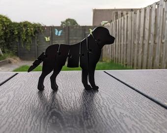 Flexi Labrador