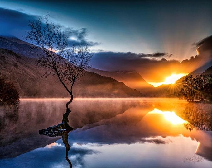 Lone Tree Sunrise, Llanberis Wales, 1st Place Award Winner. Master Of Photography