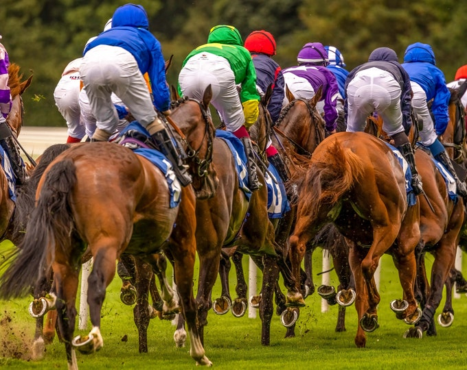 50% Off National Racehorse Week Fine Art Canvas and Print - Celebrating National Racehorse Week 12 Sep - 19 Sep 2021 Only