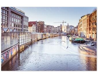 Flower market in Amsterdam / Netherlands / plants / street photography / Holland / flowers / Winter - Premium Matte Paper Poster