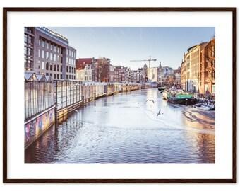 Flower market in Amsterdam / Netherlands / plants /  Holland / flowers / Winter - Premium Matte Paper Wooden Framed Poster