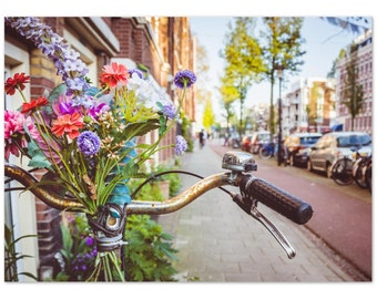 Bikes and flowers in the streets of Amsterdam / Holland / Netherlands / bicycle  - Premium Matte Paper Poster