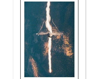 Flares out - unframed