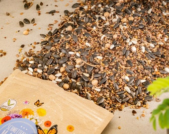 Butterfly Meadow Seeds for a Colorful Flower Meadow - Colorful & Nectar-Rich Wildflower Seeds for Butterflies
