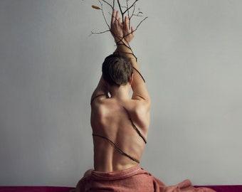 Metamorphosis - Fine Art Photographic Print