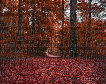 Digital download png file, landscape photography, pupur red autumn forest, path from frog perspective