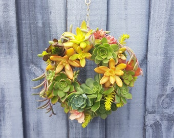Succulent Wreaths Garlands & Baskets - Live plants- Indoor outdoor garden décor - Special Occasion Gifts - Christmas, Birthday, Anniversary