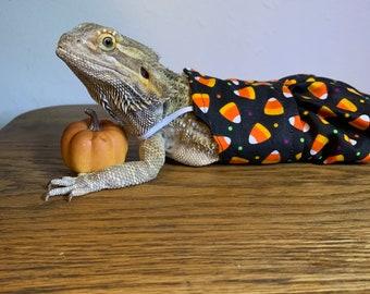 Bearded Dragon Halloween Dress!
