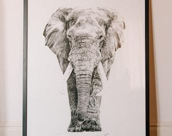 Limited Edition Black Elephant