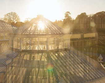 Beautiful Sunset over the Glasshouse - Wall Art, Decor, Print - Digital download Photography