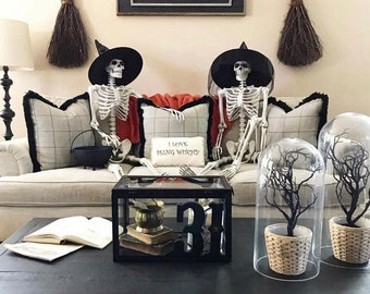 """2 Packs 16"""" Posable Halloween Skeletons Full Body Posable Skeletons, Halloween Decoration, Graveyard Decor, Haunted House Accessories"""