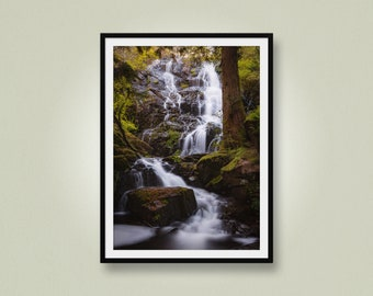 Long Exposure Waterfall in the Forest, Mary Vine Falls, Vancouver Island, British Columbia, Canada