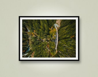 Bird's Eye View of a Trestle in the Forest, Aerial Photo of a Train Testle, Drone Photo, Sooke, Vancouver Island, British Columbia, Canada