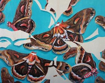 Original Moth painting 'Fly High'