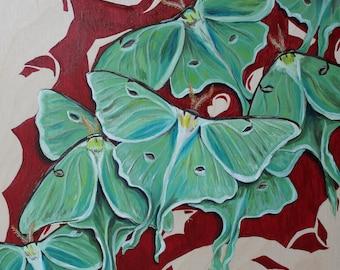 Original Moth painting 'Luna Moths'