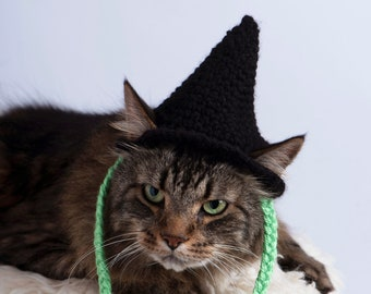 Black Green Wicked Witch Hat - Halloween Costume Pet Hat for Cats and Dogs