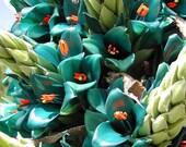 Puya alpestris, Sapphire Tower, giant bromeliad, 15 rare seeds, vibrant turquoise blooms, electric blue, drought tolerant, desert garden photo