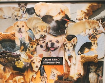 """Pet 3D Photo Collage (11""""x14"""" shown here)"""