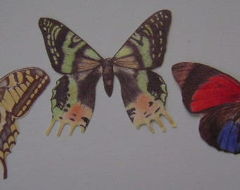 Wallies- Butterflies - 3 different Designs New in Package