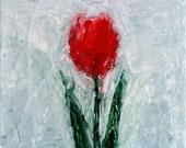 Little Red Tulip - Origin...