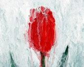 Red Sherbet - Original Ab...