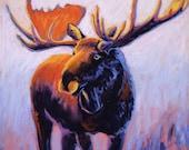 Moose Majesty - Original ...