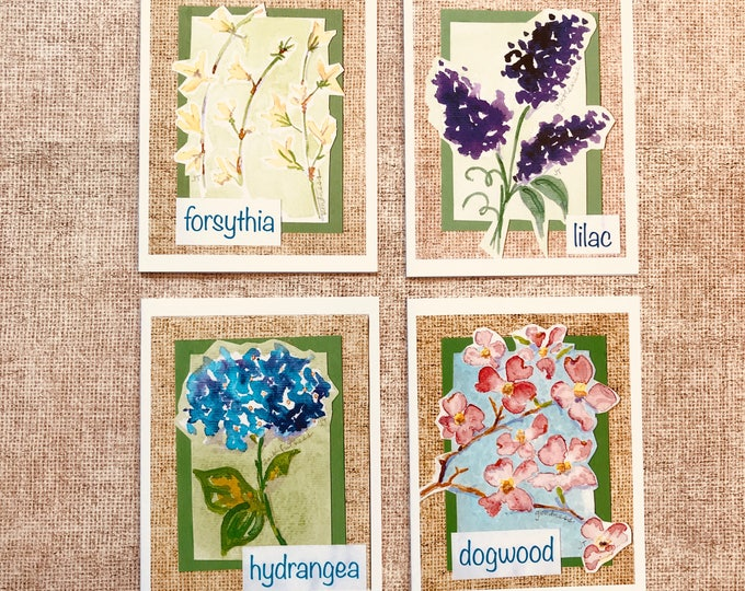 Southern Spring Flowers - Box 8 Cards