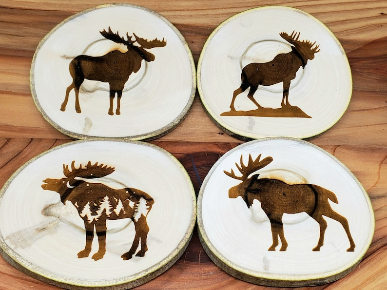 Aspen Coasters Etched Set of 4  Mountain Moose 4 different image 1
