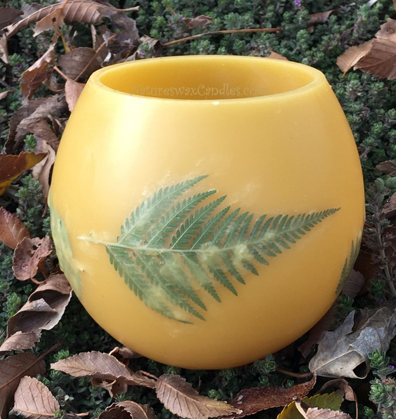 Fern leaves Beeswax lantern Colorado beeswax Pressed image 0