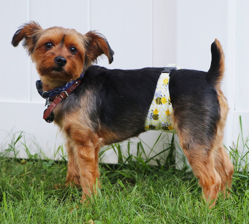 Male Dog Belly Band Belly Band Wraps Senior Dogs Potty image 0
