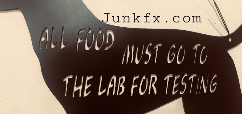 All food must go to the Lab for testing image 0