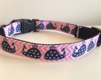 5/8 inch Pink Chevron and Polka Dot Whales Medium Dog Collar