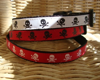 Skull Small Dog Collar in Boy Colors