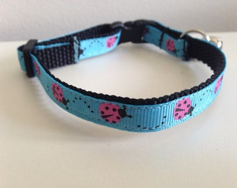 Blue with Pink Lady Bug Cat Collar