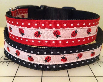 Ladybug and Polka Dot Large Dog Collar