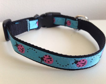 Blue with Pink Ladybugs Small 1/2 inch Dog Collar