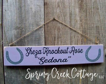 Horse Decor, Personalized Signs, Stall Signs, Horse Stall Signs, Horse Sign, Barn Sign, Rustic, Handpainted, Equestrian, Gifts, Handmade