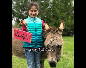 Wood Signs, Horse Sign, Barn Sign, Rustic, Horses, Personalized Signs, Stall Signs, Horse Stall Signs, Handpainted, Farm, Horses, Equestrian