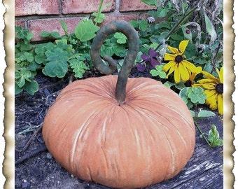 ePattern~Primitive Curled Stem Pumpkin Sitter Doll