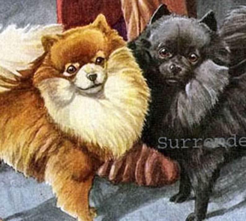 Pomeranian Maltese Terrier Dogs Louis Agassiz Fuertes 1910s Etsy