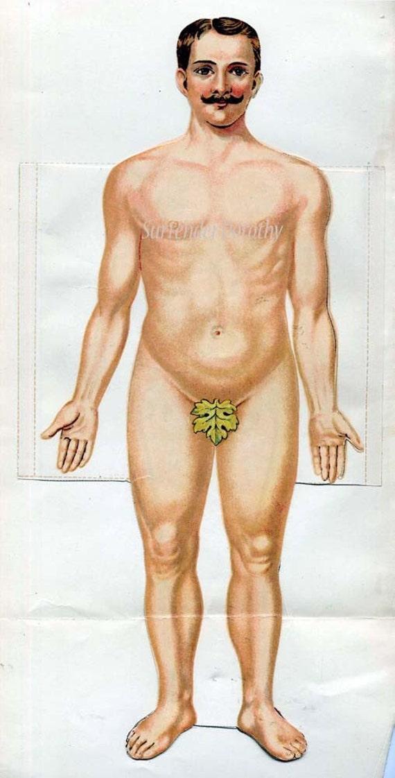Human Anatomy Man Fold Out Medical Flip Chart 1922 Vintage Etsy